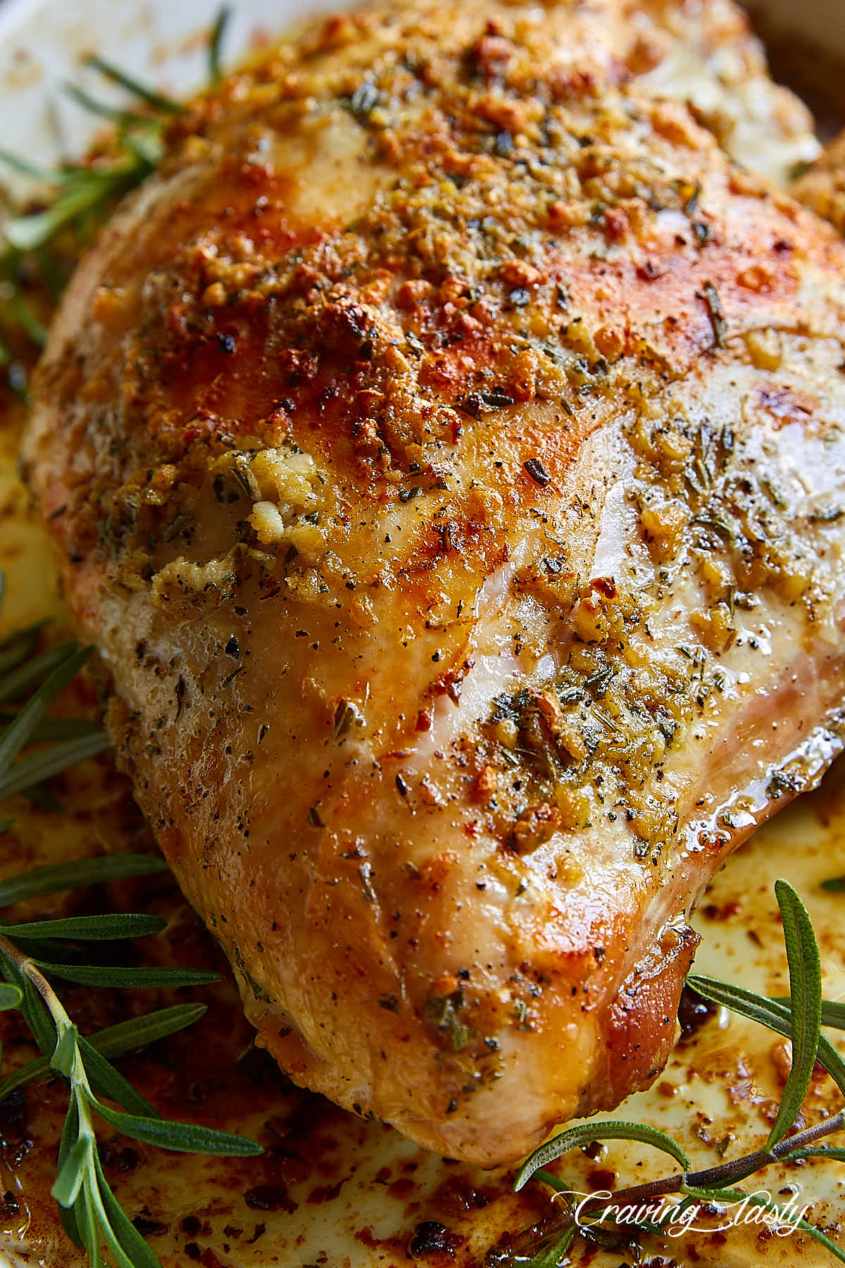 Close up of a golden-brown turkey breast roast.