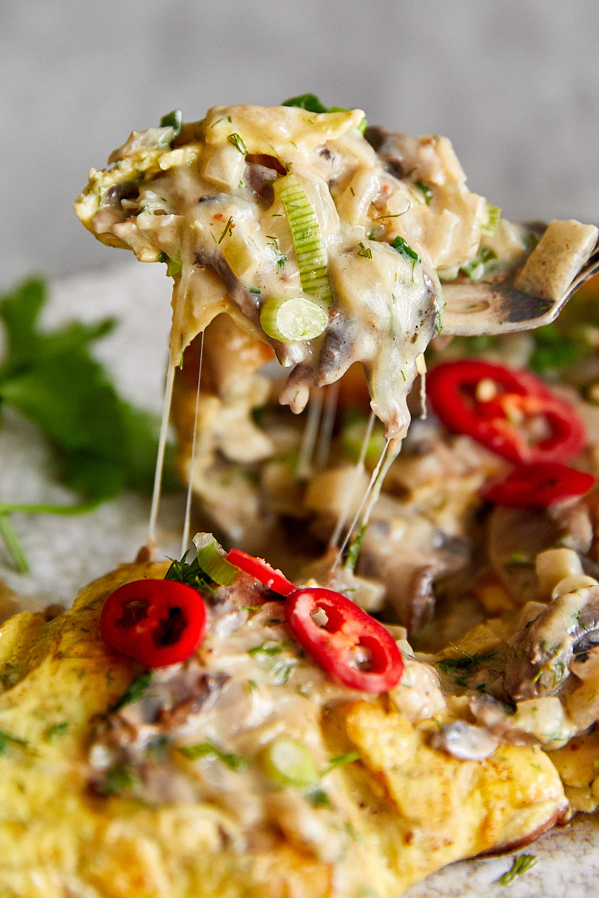 Mushroom Omelette with Creamy, Cheesy Mushroom Filling made with White Wine