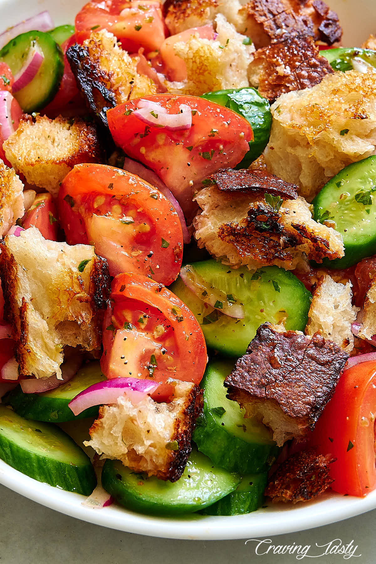 Close up of bread salad consisting of chunks of sourdough bread, tomatoes, cucumbers and red onions.
